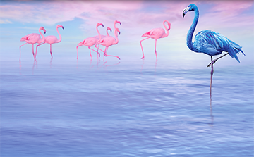 Northera Blue Flamingo